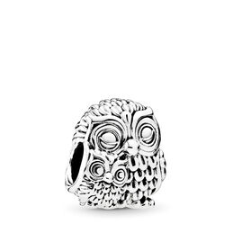 Charming Owls Charm, Sterling silver - PANDORA - #791966