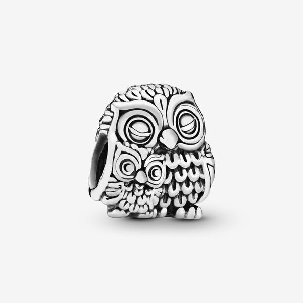 Mother Owl And Baby Owl Charm Sterling Silver