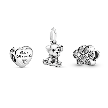 Best Friends Dog Charm Gift Set